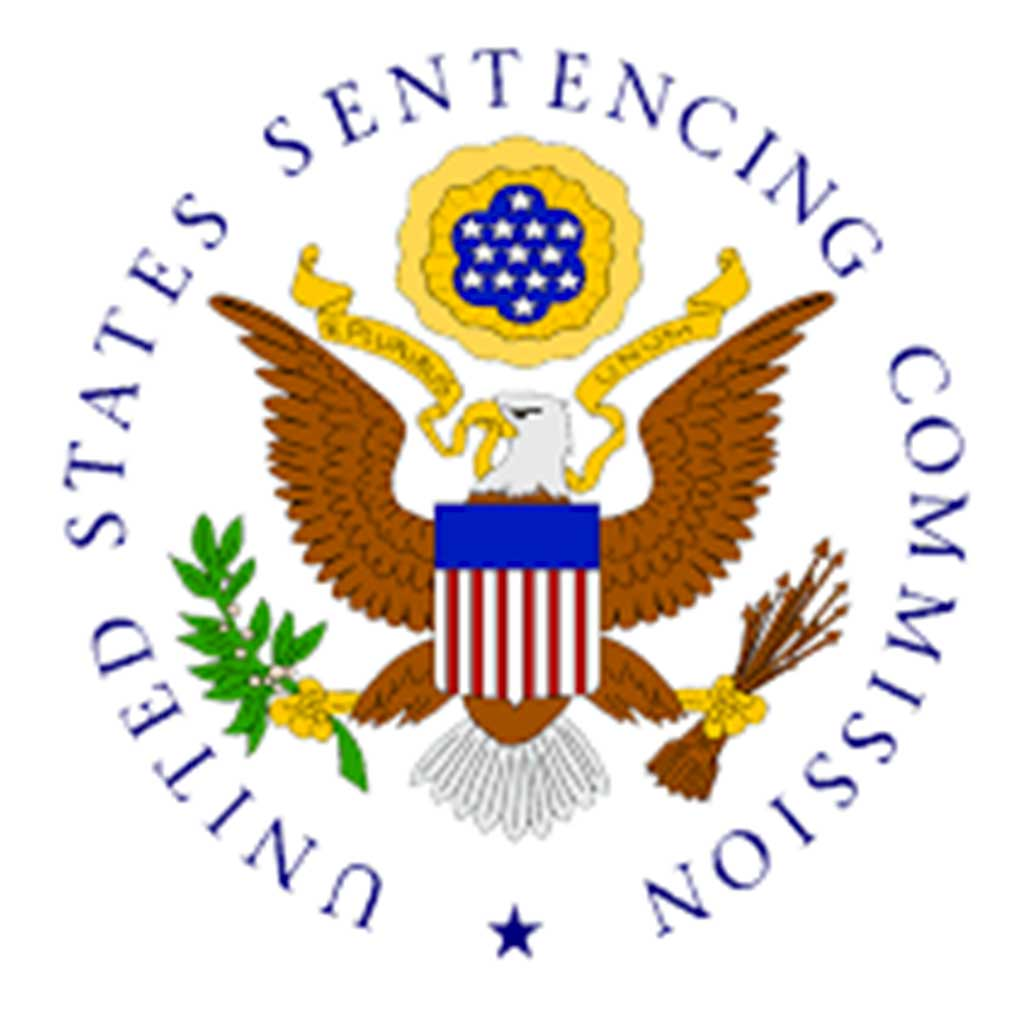 United states federal sentencing guidelines